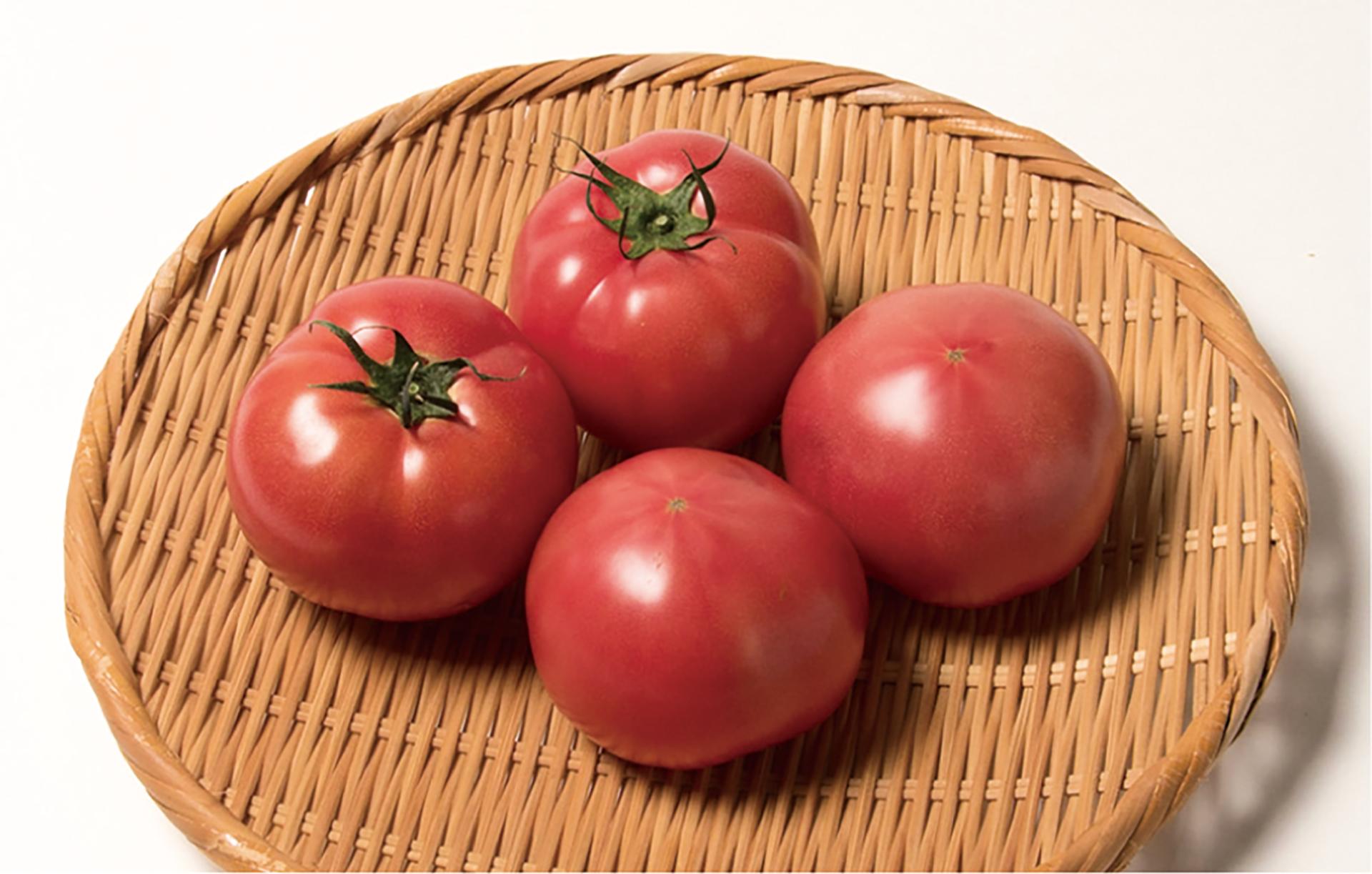平塚トマト